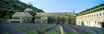 Abbey In A Lavender Field, Abbaye De Print by Panoramic Images