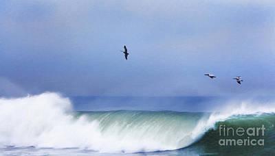 Pelican Digital Art - Above The Surf by David Millenheft