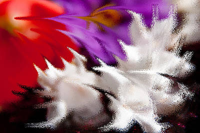 Floral Photograph - Abstract Abelia by Vanessa Thomas