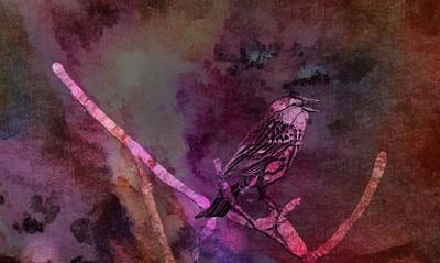 Blackbird Mixed Media - Abstract Bird Art by Dan Sproul