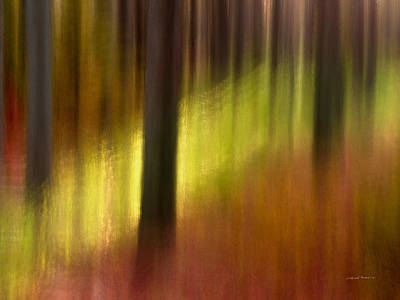 Impressionistic Landscape Mixed Media - Abstract Forest 3 by Leland D Howard