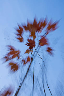 Abstract Impressions Of Fall - The Song Of The Wind Print by Georgia Mizuleva