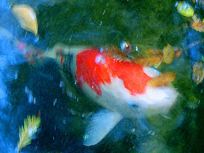 Fish Painting - Abstract Koi 3 by Amy Vangsgard