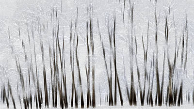 Abstract Trees With Motion Blur Print by Ron Harris