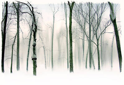 Abstract Winter Print by Jessica Jenney