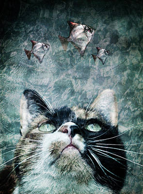 Manipulation Photograph - Abyss Cat Nr 2 by Laura Melis