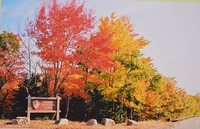 Acadia National Park Entryway In The Fall Original by Lena Hatch