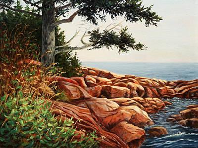 Acadia Tree Print by Elaine Farmer