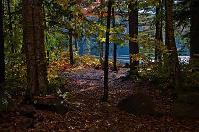 Autumn Foliage Photograph - Access To Cary Lake by David Patterson
