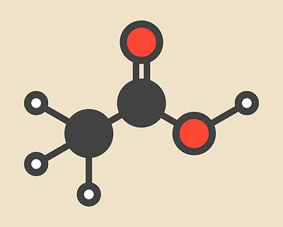 Acetic Acid Molecule Print by Molekuul