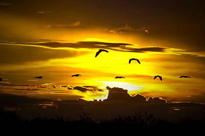 Across The Sky Print by Mark Andrew Thomas