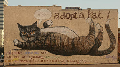 Adopt A Kat Or Me Now Print by Blue Sky