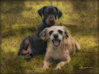 Purebred Digital Art - Adoption Is The Best Answer - Featured In Big Dogs And Abc Groups by EricaMaxine  Price