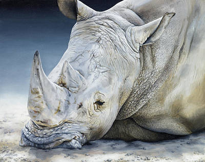 White Rhino Painting - Africa Dozing - White Rhino by Marie-Claire Colyer