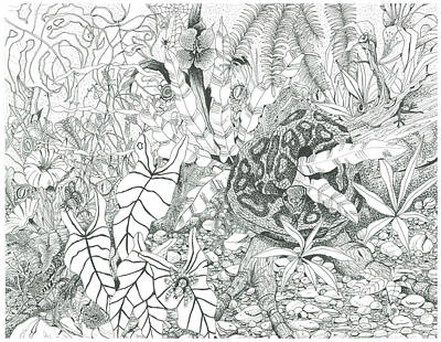 Burmese Python Drawing - Africa Watching by Richard Brooks