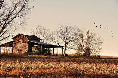 Country Scenes Photograph - After The Cotton's Up by Jan Amiss Photography