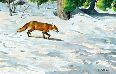 Red Fox Painting - Afternoon Visitor by Tom Hedderich