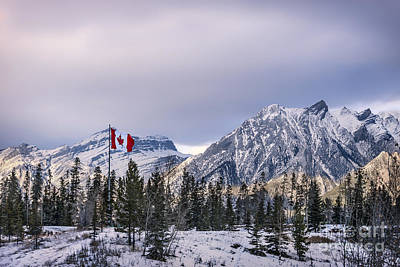 Canadian Rockies Photograph - Ageless Northern Spirit by Evelina Kremsdorf
