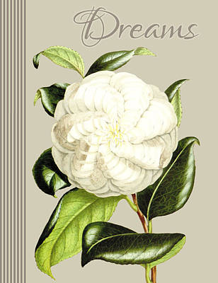 Alabaster Blossom E Vertical Print by Gail Fraser
