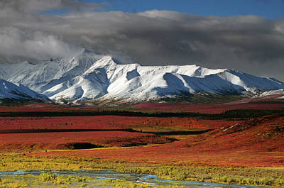 Alaska Range In Autumn, Taiga, Denali Print by Michel Hersen