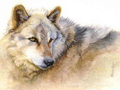Alaskan Painting - Alaskan Gray Wolf by Bonnie Rinier