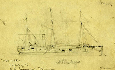Albatross Drawing - Albatross, Between 1860 And 1865, Drawing On Cream Paper by Quint Lox