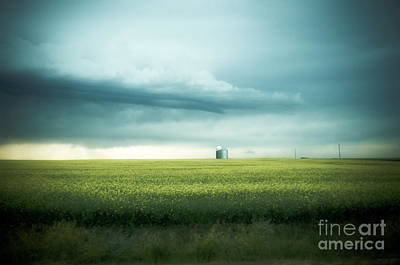 Alberta Prairie Landscape Photograph - Alberta Praires by Annie Lemay