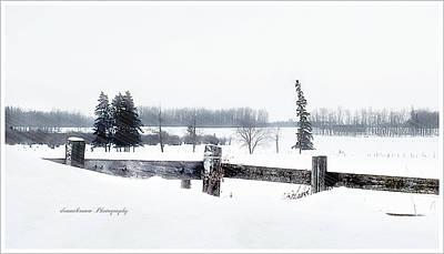 Alberta Winter Wonderland Print by Donna Brown