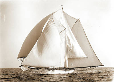 Alcaea, Alcaea Schooner, Yachts Print by Litz Collection
