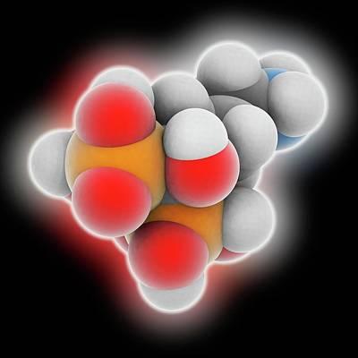 Alendronic Acid Drug Molecule Print by Laguna Design
