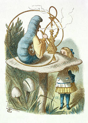 Caterpillar Photograph - Alice Meets The Blue Caterpillar by British Library