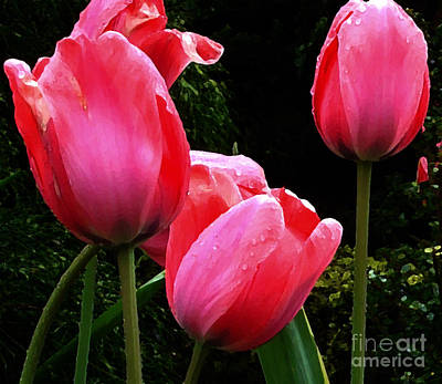 All About Tulips Victoria Print by Glenna McRae
