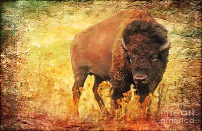 Bison Digital Art - All But Forgotten  by Lianne Schneider