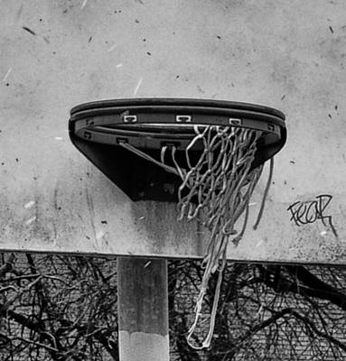 All Net Print by Bill Cannon