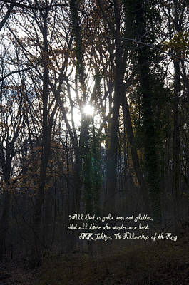 Sun Rays Digital Art - All That Is Gold by Bill Cannon