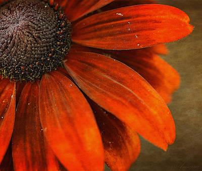 Blooming Digital Art - Allegra by Maria Angelica Maira