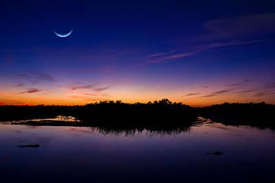 Alligator Photograph - Alligator Twilight by Mark Andrew Thomas