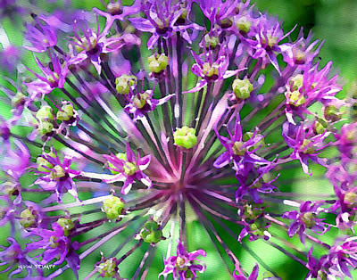 Purple Digital Art - Allium Series - Close Up by Moon Stumpp
