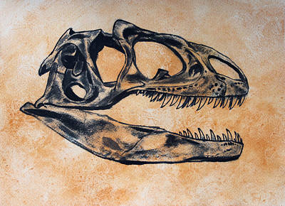 Allosaurus Skull Print by Harm  Plat