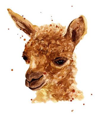 Alluring Alpaca Print by Alison Fennell