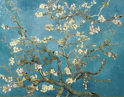 Almond Blossoms Print by Vincent Van Gogh