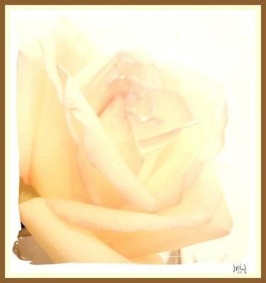 Wrap Digital Art - Almost Yellow Rose by Marsha Heiken