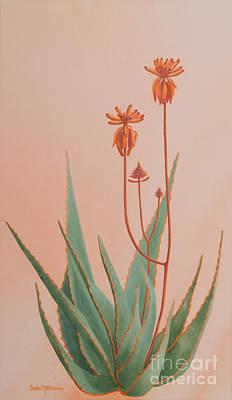 Aloe Painting - Aloe Family by Sandra Neumann Wilderman