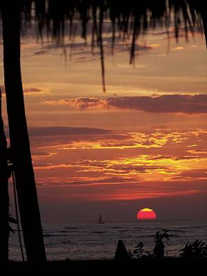 Gold Tone Photograph - Aloha by Karen Wiles