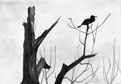 Shashi Kumar Drawing - Alone by Shashi Kumar