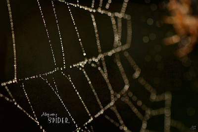 Contemporary Abstract Photograph - Along Came A Spider by Lisa Knechtel