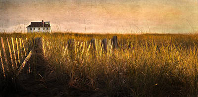 Provincetown Photograph - Along The Fence by Bill Wakeley