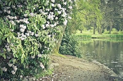 Horizontal Photograph - Along The Lake by Priya Ghose