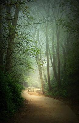 Along The Path Print by Svetlana Sewell