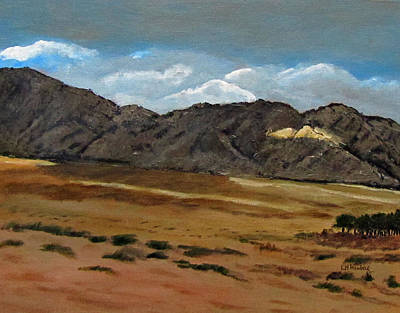 Along The Way To Eilat Print by Linda Feinberg